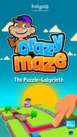 Crazy Maze - Traffic Puzzle
