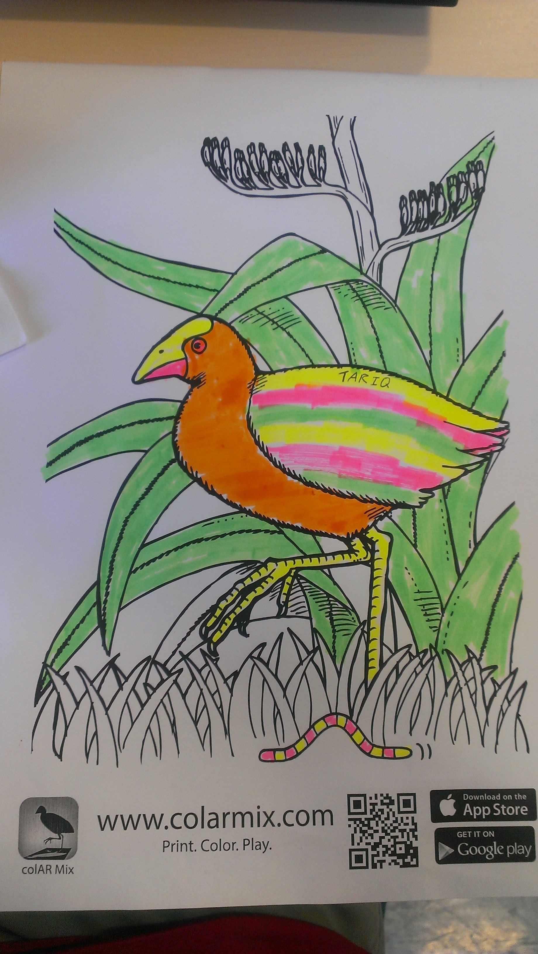 colar mix coloring pages - photo#41